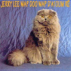 Jerry lee wap doo wap